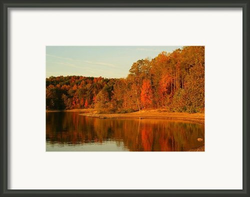 Fall At Patoka Framed Print By Brandi Allbright