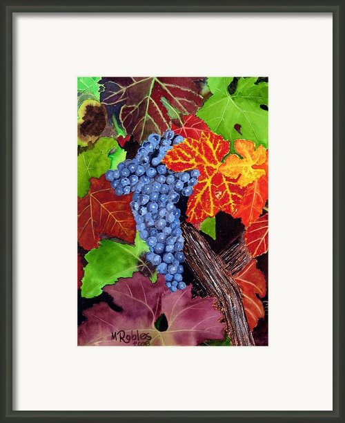 Fall Cabernet Sauvignon Grapes Framed Print By Mike Robles