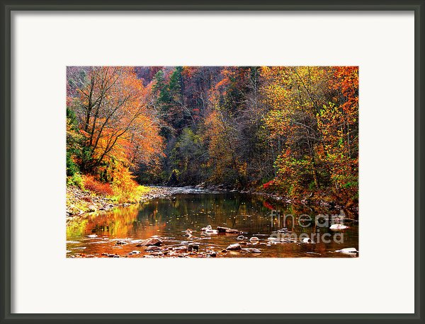 Fall Color Elk River Framed Print By Thomas R Fletcher
