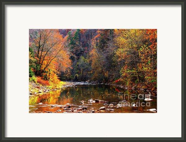 Fall Color Elk River Framed Print By Thomas R Fletcher