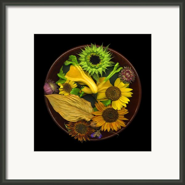 Fall Colors Framed Print By J Arthur Davis
