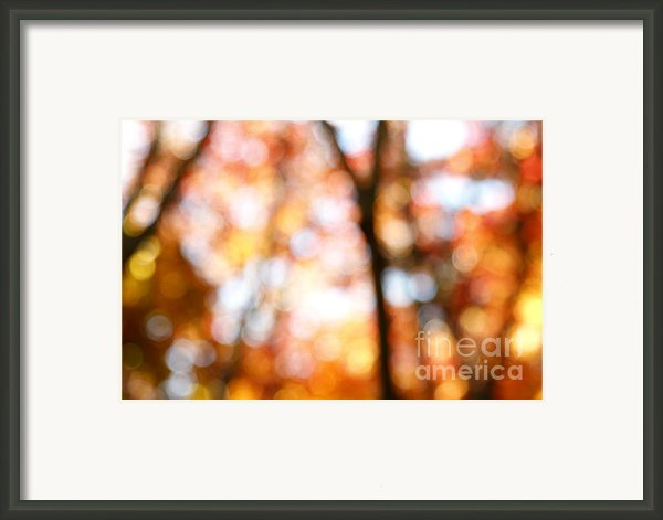 Fall Colors Framed Print By Les Cunliffe