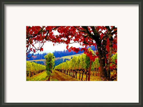 Fall In Dundee Framed Print By Margaret Hood