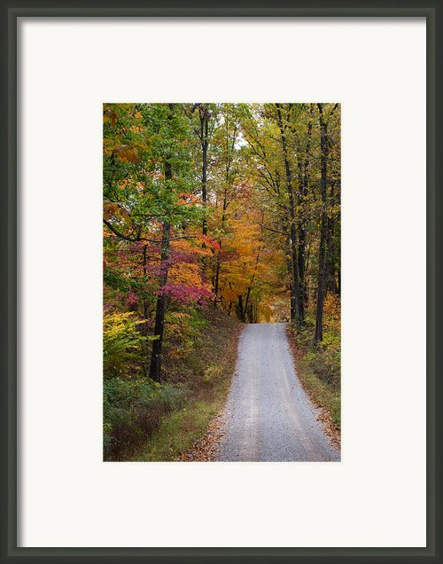 Fall In Southern Indiana Framed Print By Melissa Wyatt