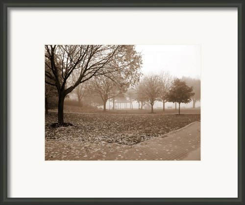 Fall  Framed Print By Paul Sandilands