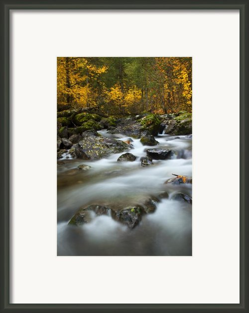 Fall Surge Framed Print By Mike  Dawson