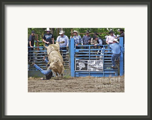 Fallen Cowboy Framed Print By Sean Griffin