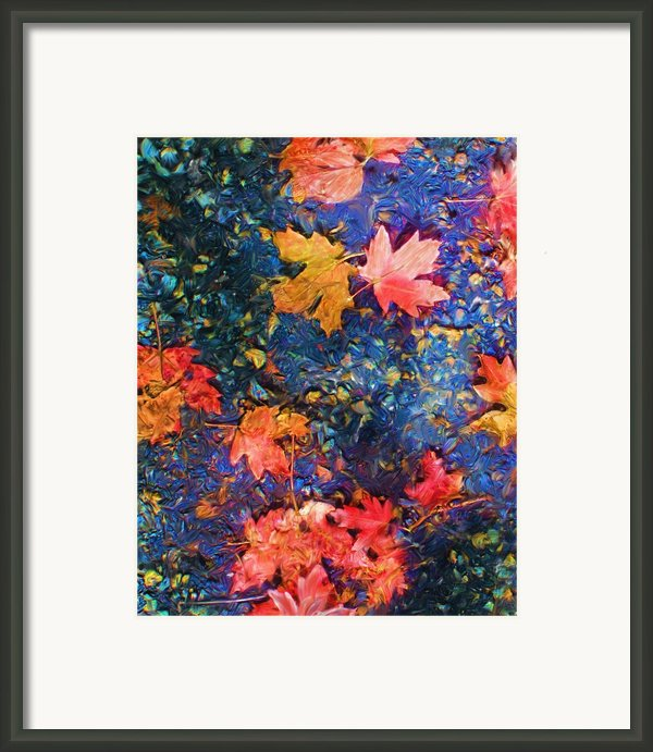 Falling Blue Leave Framed Print By Marilyn Sholin