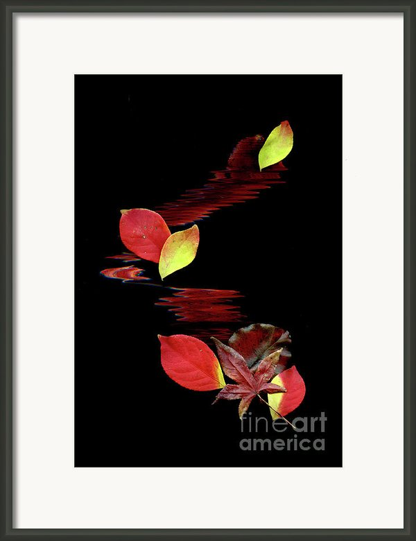 Falling Leaves Framed Print By Gerlinde Keating - Keating Associates Inc