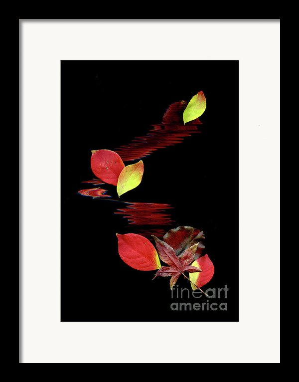 Falling Leaves Framed Print By Gerlinde Keating - Keating Associates Inc
