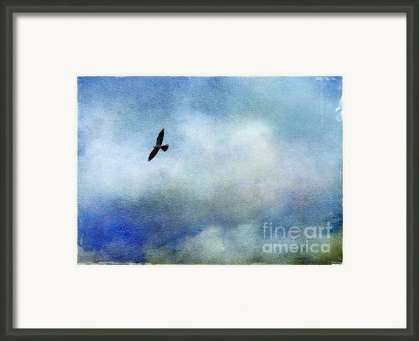 Far Above Framed Print By Judi Bagwell