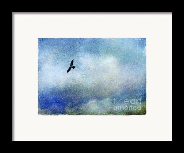 Far Above Framed Print By Judi Bagwell
