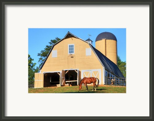 Farm Framed Print By Mitch Cat