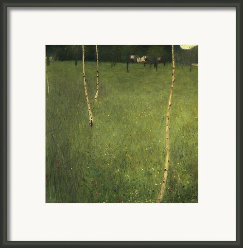 Farmhouse With Birch Trees Framed Print By Gustav Klimt