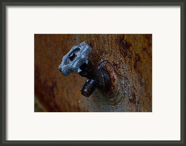 Faucet Framed Print By Wilma  Birdwell