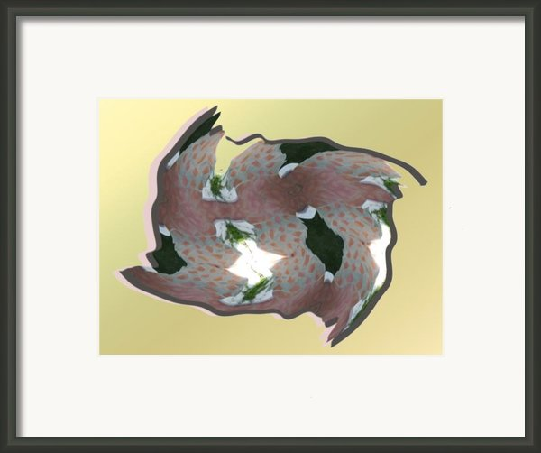 Feathered Tile Framed Print By Ron Bissett
