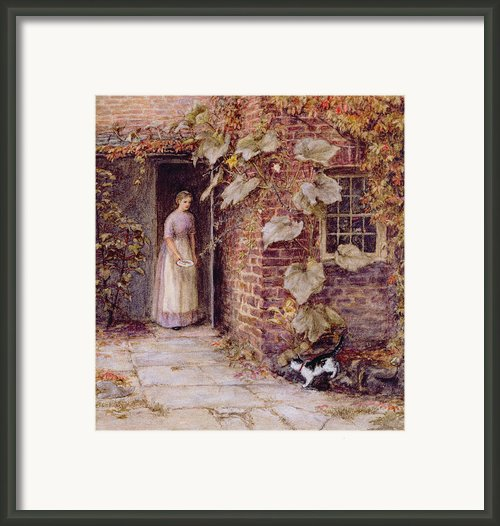 Feeding The Kitten Framed Print By Helen Allingham