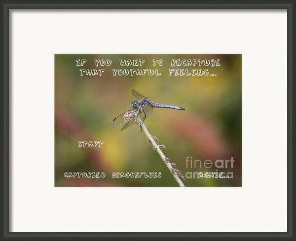Feel Young Again Framed Print By Carol Groenen