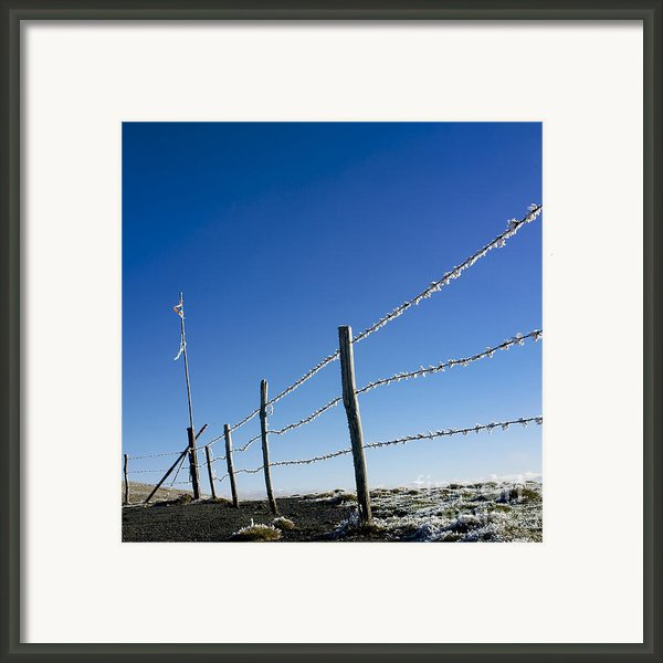 Fence Covered In Hoarfrost In Winter Framed Print By Bernard Jaubert