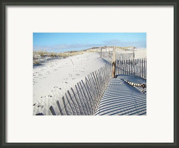 Fences Shadows And Sand Dunes Framed Print By Mother Nature