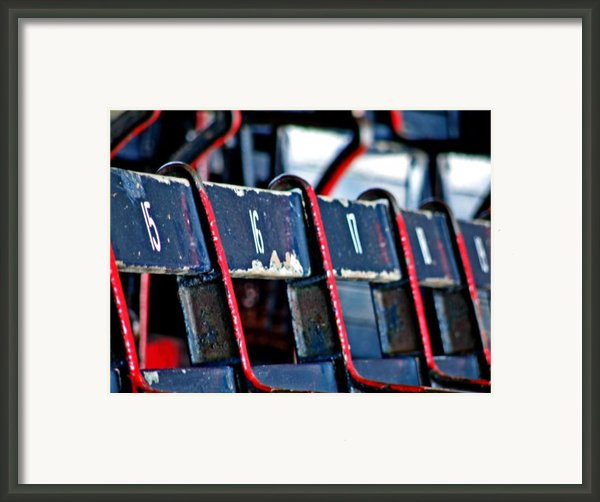 Fenway Framed Print By Donna Shahan