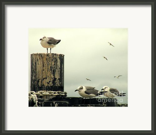 Ferry Hypnosis Framed Print By Joe Jake Pratt
