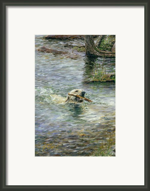 Fetch Framed Print By Doug Kreuger