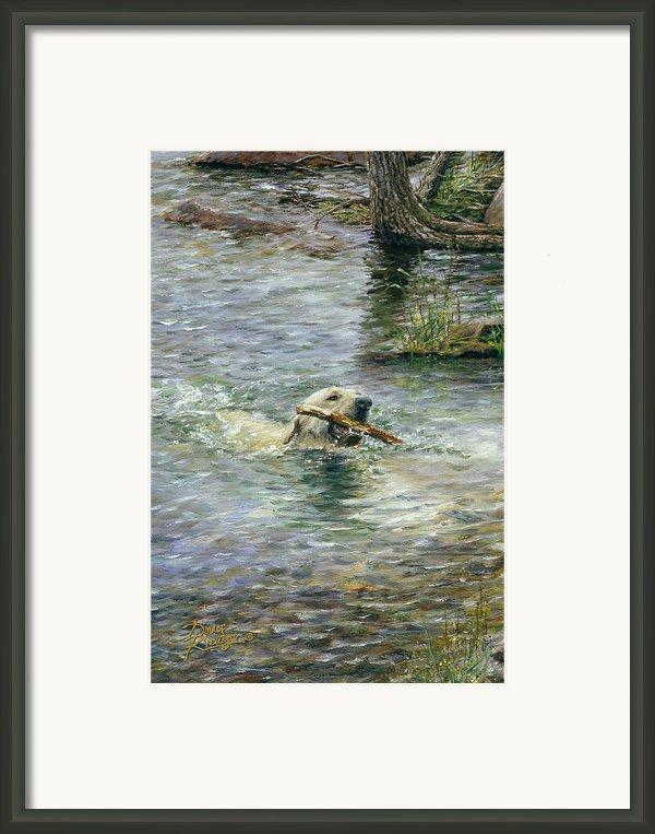 Fetch Framed Print By Doug Kreuger