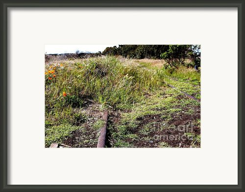 Final Stop . 7d15028 Framed Print By Wingsdomain Art And Photography