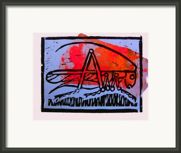 Fire Cricket Framed Print By Adam Kissel