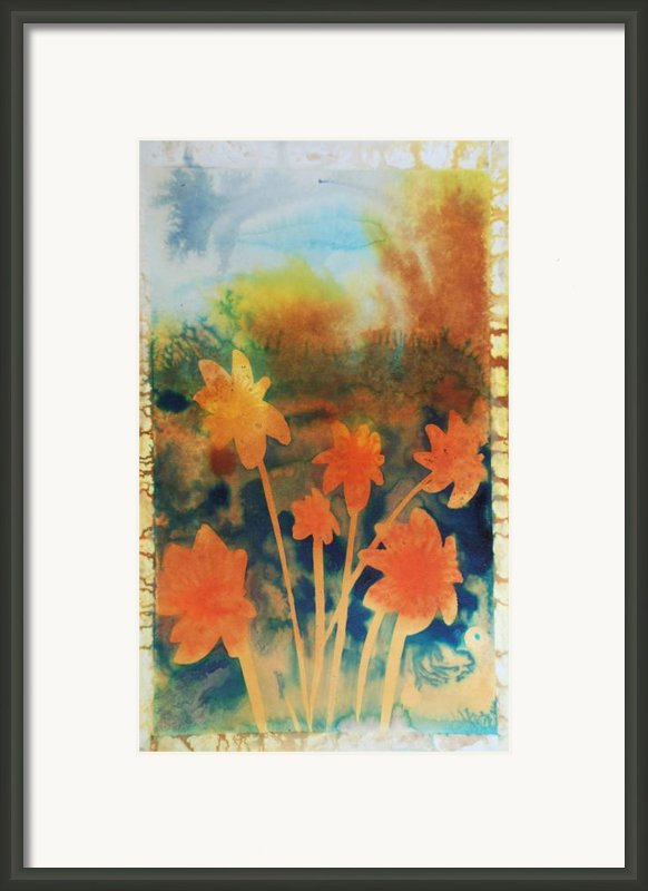 Fire Storm In The Wild Flower Meadow Framed Print By Amy Bernays