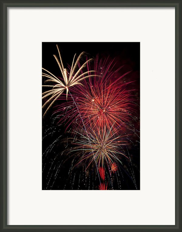 Fireworks Framed Print By Garry Gay