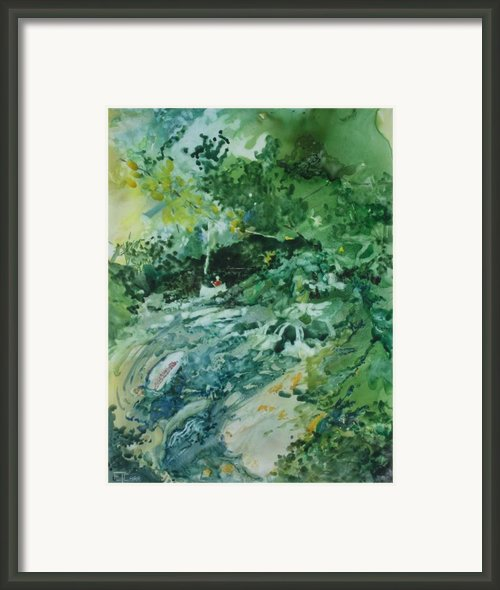 Fish Ahead Framed Print By Elizabeth Carr