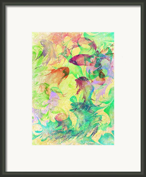 Fish Dreams Framed Print By Rachel Christine Nowicki