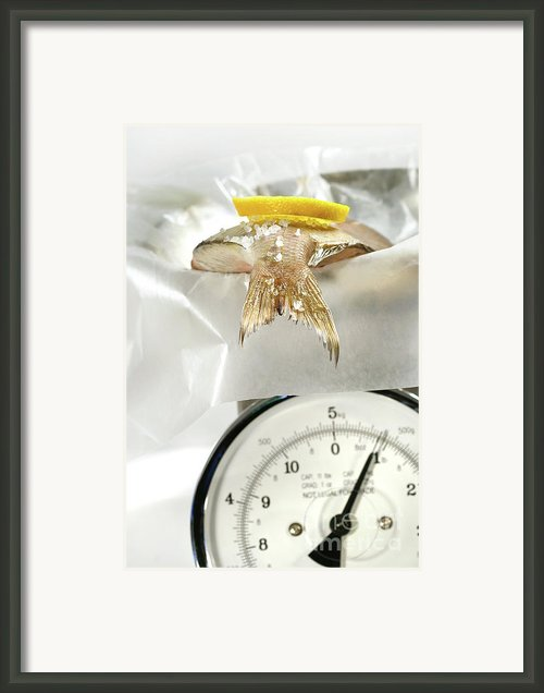 Fish With Lemon Slice On Weight Scale Framed Print By Sandra Cunningham