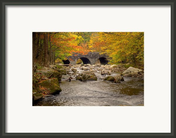 Fishing Bridge I Framed Print By Charles Warren