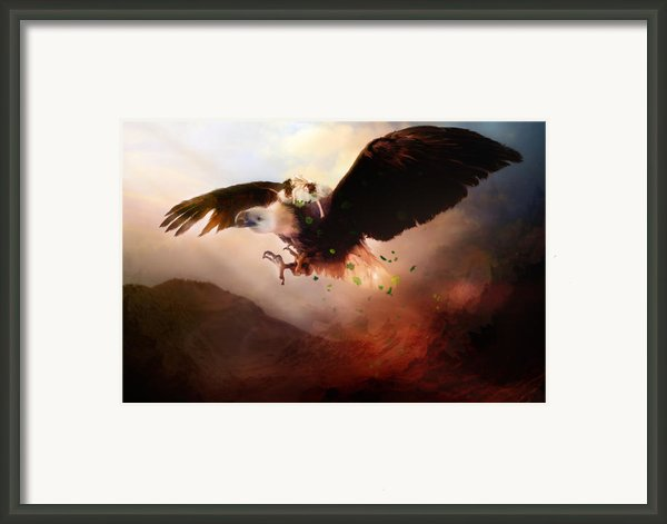 Flight Of The Eagle Framed Print By Karen Koski