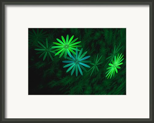 Floating Floral-007 Framed Print By David Lane
