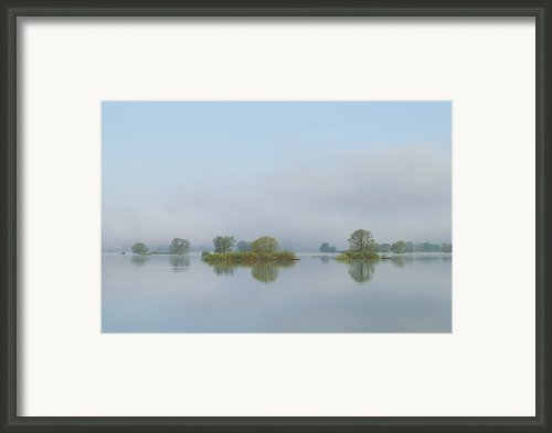 Flooded Meadows In Spring, Unteres Framed Print By Norbert Rosing
