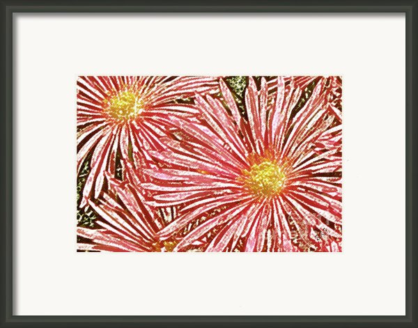 Floral Design No 1 Framed Print By Ben And Raisa Gertsberg