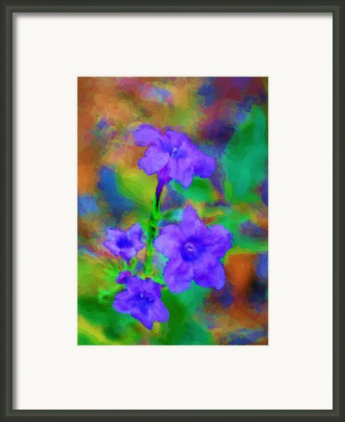 Floral Expression Framed Print By David Lane