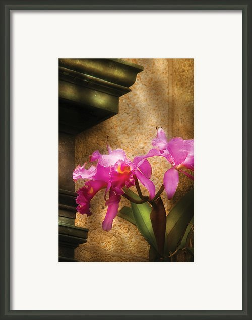 Flower - Orchid - Cattleya  Framed Print By Mike Savad