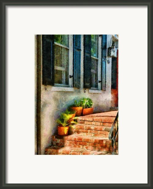 Flower - Plants - The Stoop  Framed Print By Mike Savad