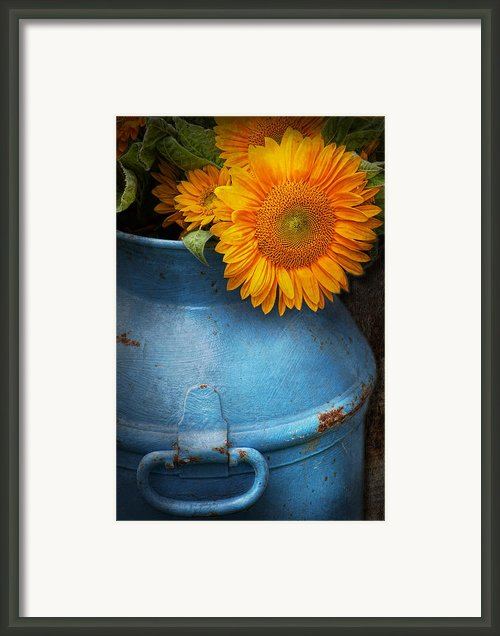 Flower - Sunflower - Little Blue Sunshine  Framed Print By Mike Savad