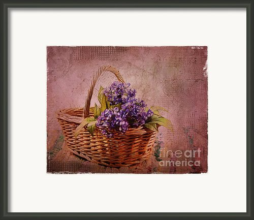 Flower Basket Framed Print By Judi Bagwell