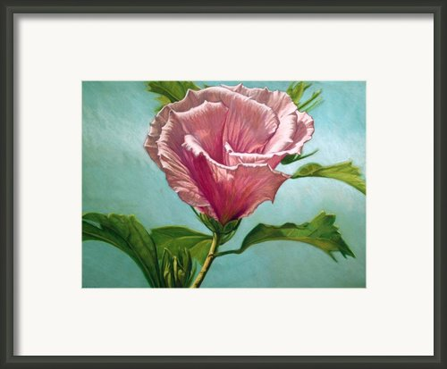 Flower In The Sky Framed Print By Melissa Tobia
