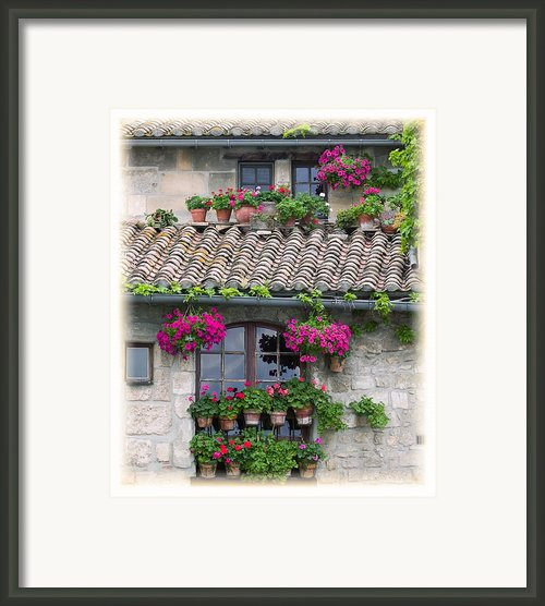 Flower Pots In Windows In Arles Framed Print By Carson Ganci
