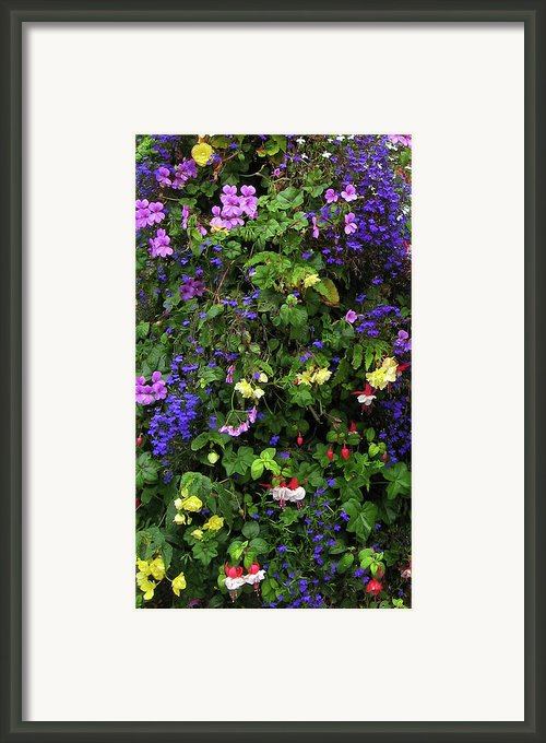 Flower Power Framed Print By Kurt Van Wagner