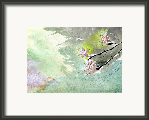 Flowers 3 Framed Print By Anil Nene