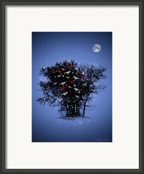 Flying Hearts Framed Print By Sabine Stetson